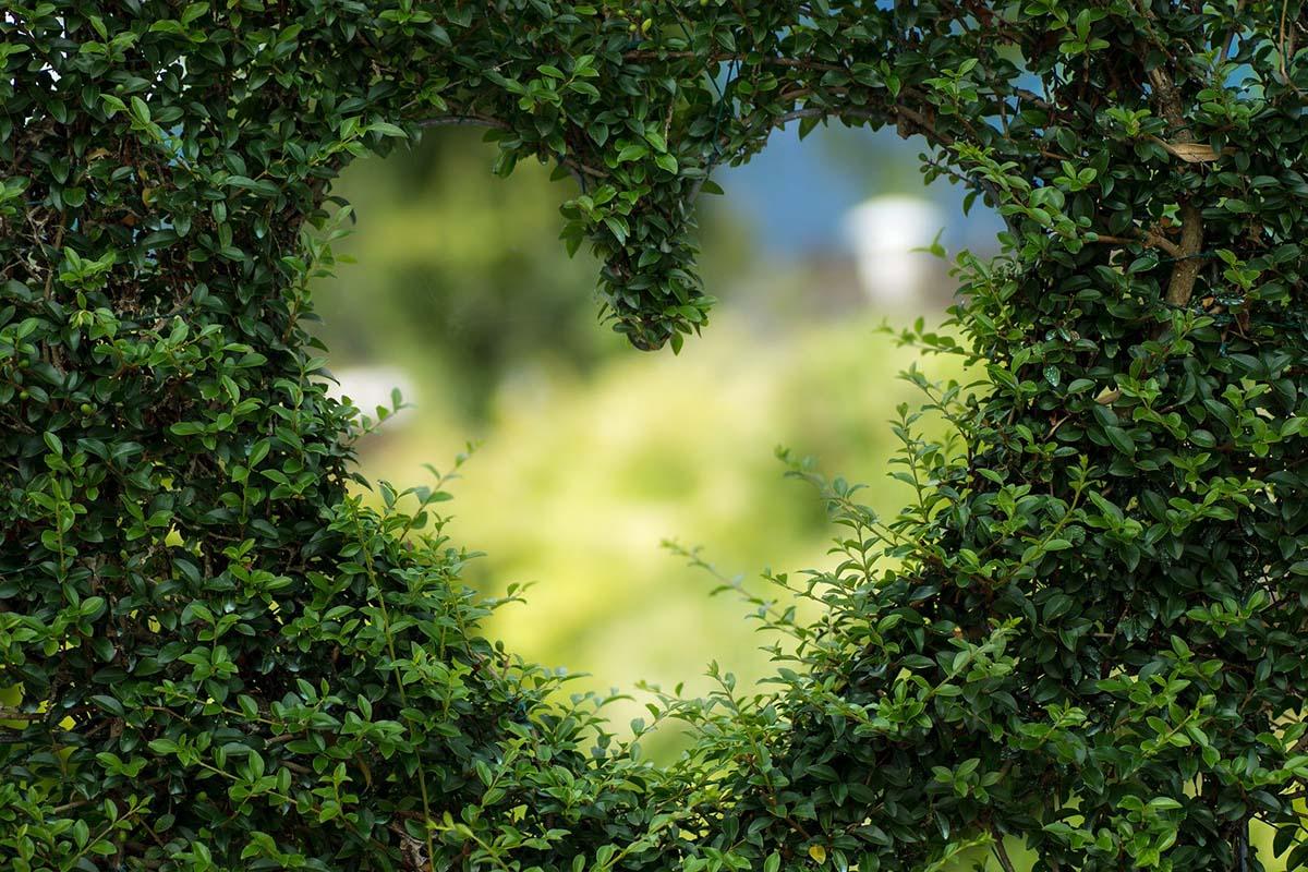 Una Escapada Romántica Al Corazón De Mallorca Hort De Cas Misser